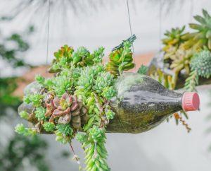Horta suspensa em garrafa pet ilustra post sobre horta dentro do seu apartamento, do blog da Morar Construtora