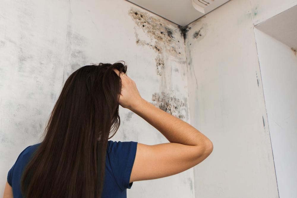 Aprenda a tirar o mofo de casa - Morar Construtora (4)